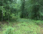 Lot 3 Mohican Drive, Georgetown image