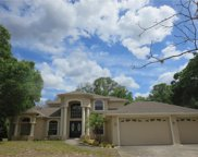 10508 Hinds Place, Odessa image