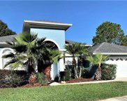 18726 Forest Glen Court, Tampa image