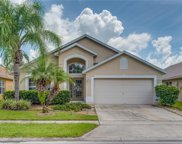 1319 Willow Branch Drive, Orlando image