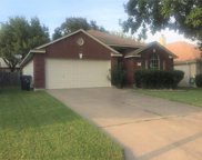 2304 Rick Whinery Dr, Austin image