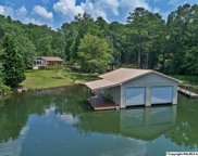 1040 Pine Island Circle, Scottsboro image