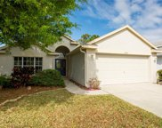2643 Hawk Roost Court, Holiday image