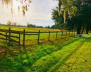 Trapnell Road, Plant City image