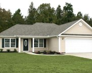 TBB3 Barons Bluff Drive, Conway image