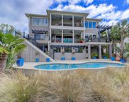 2828 River Vista Way, Mount Pleasant image