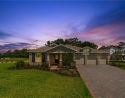 705 Primrose Willow Way, Apopka image