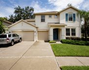 15718 Starling Dale Lane, Lithia image