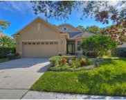 9621 Greenpointe Drive, Tampa image