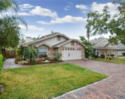 5020 Cypress Trace Drive, Tampa image