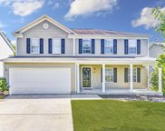208 Eagle Pointe Drive, Chapin image