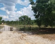 13820 Max Hooks Road, Clermont image