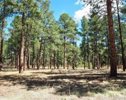 40286 Moon Stone Court, Deer Trail image