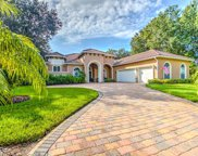 6236 Kingbird Manor Drive, Lithia image