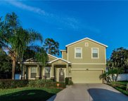 2602 Holly Bluff Court, Plant City image
