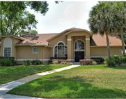 708 Red Wing Drive, Lake Mary image