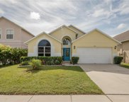 2815 Playing Otter Court, Kissimmee image
