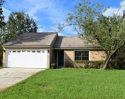 587 ARTHUR MIDDLETON CIR, Orange Park image