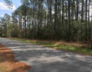 Lot 19 Alligator Court, Conway image