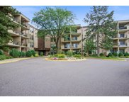 6650 Vernon Avenue S Unit #203, Edina image