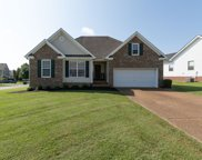 1003 Persimmon Dr, Spring Hill image
