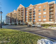 440 West Mahogany Court Unit 301, Palatine image