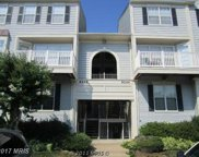 9220 CARDINAL FOREST LANE Unit #E, Lorton image