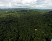 6791 Happy Hollow Road, Trussville image