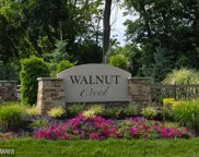 4988 WILD OLIVE COURT, Ellicott City image