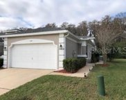 3144 River Branch Circle, Kissimmee image
