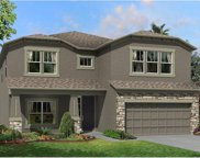 10433 Arbor Groves Place, Riverview image