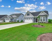 324 Switchgrass Loop, Little River image