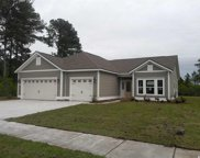 1121 Cycad Drive, Myrtle Beach image