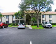 2025 SW Silver Pine Way Unit #1202, Palm City image
