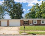 4232 Massabielle, St Louis image