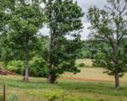 10538 Valley View Rd, Lascassas image