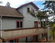 130 Potlatch Trail, Woodland Park image
