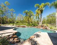 6761 Sable Ridge Ln, Naples image