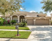 6614 Thornton Palms Drive, Tampa image
