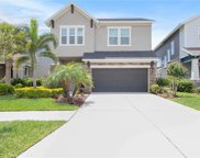 6526 Salt Creek Avenue, Apollo Beach image