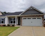 1171 Gregory Landing Drive, North Augusta image