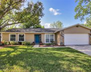 4114 Hollow Hill Drive, Tampa image