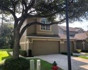 18971 Duquesne Drive, Tampa image