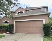 1244 Willow Branch Drive, Orlando image
