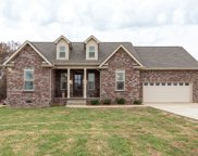 439 Tom Link Rd, Cottontown image