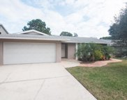 1967 Hastings Drive, Clearwater image