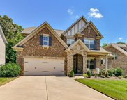 9123 Blue Ridge  Drive, Indian Land image