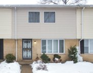 1049 East 93Rd Street Unit 1049, Chicago image