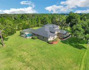 11001 Arrowtree Boulevard, Clermont image