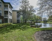 10024 Strafford Oak Court Unit 809, Tampa image